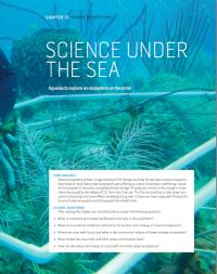 undersea-cover